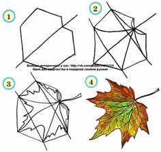 Page shows how to learn step by step to draw a maple leaf. Developing children's skills for drawing and coloring. Leaf Drawing, Basic Drawing, Plant Drawing, Drawing For Kids, Painting & Drawing, Doodle Drawings, Doodle Art, Easy Drawings, Drawing Sketches