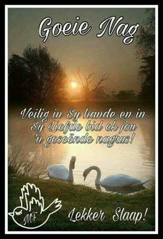 Evening Greetings, Goeie Nag, Goeie More, Afrikaans Quotes, Text Pictures, Good Night Quotes, Sleep Tight, Day Wishes, Morning Greeting