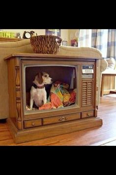 Vintage TV made into a dog bed... So cute