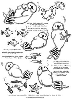 Sea Otter Coloring Page Inspirational Otter Fun Facts Coloring for Kids Sea Otter Facts, Baby Animals, Cute Animals, Baby Giraffes, Wild Animals, Baby Sea Otters, Otter Love, Serpentina, River Otter