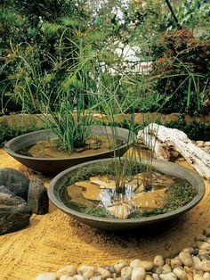 Water gardening in pots Repinned by www.claudiadeyongdesigns.com