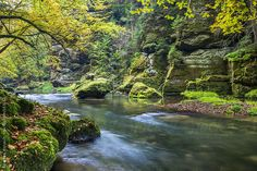 Fall Creek in the Kamnitz Gorge by Andreas Wonisch