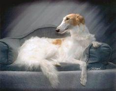 borzoi...the epitome of dog elegance