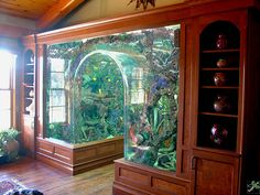 Saltwater fish and reef aquariums. I have two, but nothing like this one!!!                                                                                                                                                      More