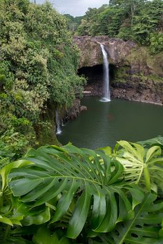 Rainbow Falls, Big Island, Hawaii,