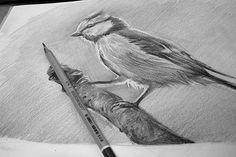 Мастер-класс по рисованию карандашом от студии YadoArt: обучение рисованию карандашом с нуля в Москве
