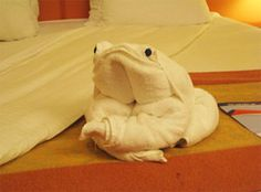 Towel Toad
