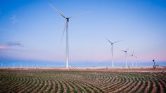 Colorado leads the nation for wind power manufacturing jobs and was ranked among the top three states for #windpower employment.