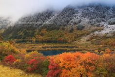 https://flic.kr/p/fNEzpy | The Two Seasons (Jiuzhaigou) | Jiuzhaigou Valley is part of the Min Mountains on the edge of the Tibetan Plateau and stretches over 72,000 hectares (180,000 acres). It is known for its many multi-level waterfalls, colorful lakes, and snow-capped peaks. Its elevation ranges from 2,000 to 4,500 metres (6,600 to 14,800 ft). Jiuzhaigou Valley was inscribed by UNESCO as a World Heritage Site in 1992 and a World Biosphere Reserve in 1997. The Shuzheng Valley (树正沟…