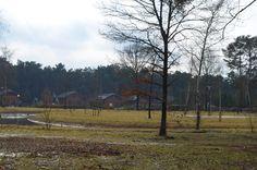 Het park in februari 2015
