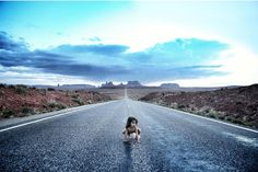 Wyatt Neumann's internet censored photographs at Soho's Safari Gallery