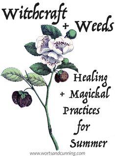 weeds witchcraft summer