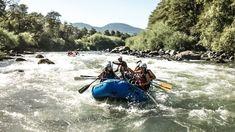 Pucón: um guia com dicas do que fazer, hospedagens e muito mais Chile, Highlights, Places To Visit, Boat, Explore, Adventure, History, Travel, Animals