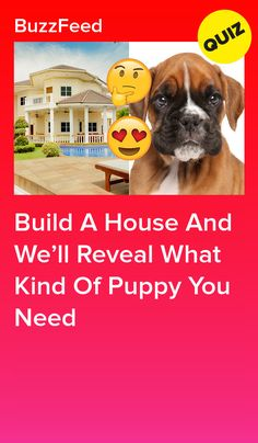 Build A House And We'll Reveal What Kind Of Puppy You Need Horse Quizzes, Dog Quizzes, Quizzes Funny, Random Quizzes, Buzzfeed Quiz Funny, Buzzfeed Quizzes Love, Fun Quizzes To Take, House Quiz, Friend Quiz