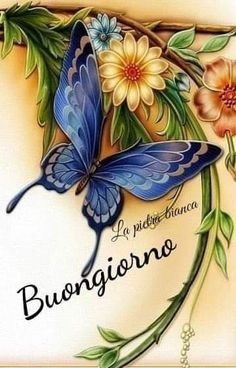 Italian Greetings, Italian Memes, Morning Images, Good Morning, Happy Birthday, Encouragement Quotes, Aurora, Coastal, Anna