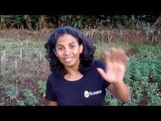 Mirana, guide Huwans, nous présente Madagascar