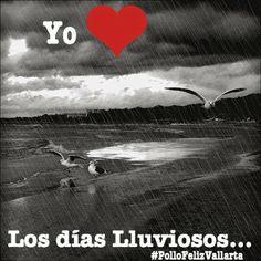 #Lluvia #PolloFeliz #PuertoVallarta #Vallarta