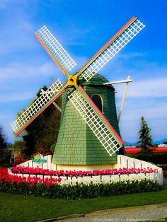 A windmill at the tulip festival, Mt. Vernon, WA. April 2004.