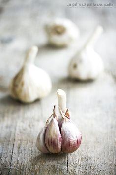 Garlic   La gatta col piatto che scotta