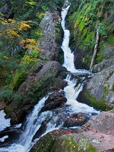 Things to Do in the North Woods of Wisconsin | Midwest Living Hayward Wisconsin, Wisconsin Waterfalls, Camping World, La Crosse Wisconsin, Minocqua Wisconsin, Wisconsin Vacation, Rv Sales, Norway Camping, Family Road Trips