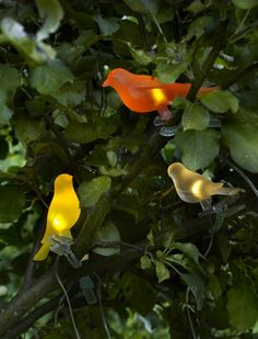 Place the SOLVINDEN bird clips outdoors to enjoy light at night (chirping not included).