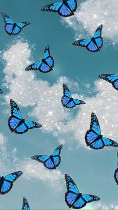 Aesthetic blue butterflys