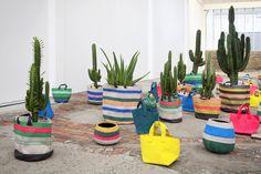 cactus sacola de feira