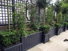 Painted Planters U0026 Trellis | Fencing | Pinterest | Planters, Gardens And  Garden Ideas