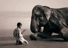 Boy reading to an elephant. Ashes and Snow Nomadic Museum photo exhibit. Photograph by Gregory Colbert.