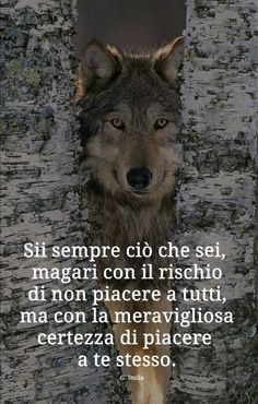 Fabrizio,,,969 Words Quotes, Wise Words, Positive Quotes, Motivational Quotes, Italian Quotes, Quotes About Everything, She Wolf, Love Your Life, Animal Quotes