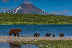 Kamchatka - La península de Kamchatka es una península volcánica de 1250 km de longitud situada en Siberia, al este de Rusia y que se interna en el océano Pacífico.