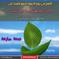  #jumaamubarak #JumaMubarak #goodmorning #jordan #جمعه_مباركه #جمعة_مباركة #جمعة_طيبة #صباح_الخير_يا_عرب