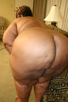 Free fucking shemale huge boob