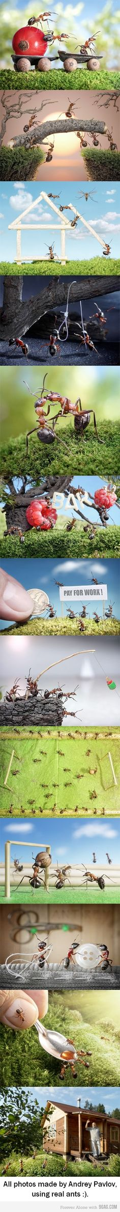 Some macro manipulations by Andrey Pavlov