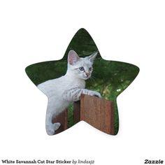 White Savannah Cat Star Sticker