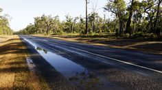 Morning after rain in West Australia.