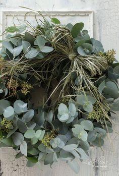 Eucalyptus en couronne