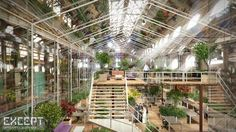Abandoned Warehouse to Be Transformed into Lush Zero-Energy Of...