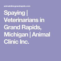 Spaying   Veterinarians in Grand Rapids, Michigan   Animal Clinic Inc.