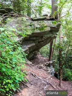Hiking the Panther Creek Falls trail in North Georgia