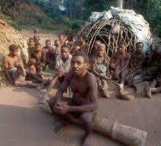 Les Pygmées, symbole des capacités biologiques d'adaptation de l'homme