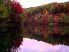 Fall Foliage | Tickner's Canoes