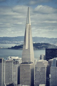 Incredible San Francisco from the Top of the Mark Hopkins.