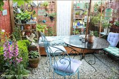 Boxwood Cottage: Summer at Boxwood Cottage garden ~ Update June to July 2013 with London shopping tips!