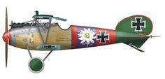 Albatros D.V by Björn Huber Ltn. Paul Bäumer Jagdstaffel 5, 1917/18