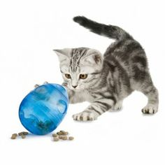Great #cat gifts!