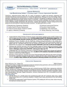 samples executive resumes professional cvs career change executive resume services