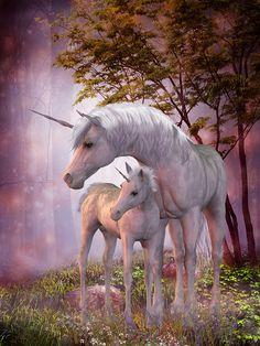 pegasus and unicorn - Google Search