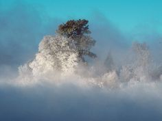 Photo of the Day: Best Pictures of May Gallery - National Geographic National Geographic Fotos, Photographie National Geographic, National Geographic Photography, Cool Pictures, Cool Photos, Beautiful Winter Scenes, Beautiful Things, Bay Photo, Winter Trees