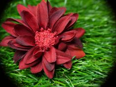 Haarnadel, Haarschmuck, Blume, rot, rost, Aster von GeschmeideZauber auf DaWanda.com
